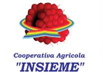 Logo Raspberries Freds
