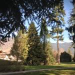 Parco secolare degli Asburgo