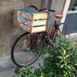 Chioggia in bicicletta