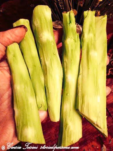 Gambo del broccolo