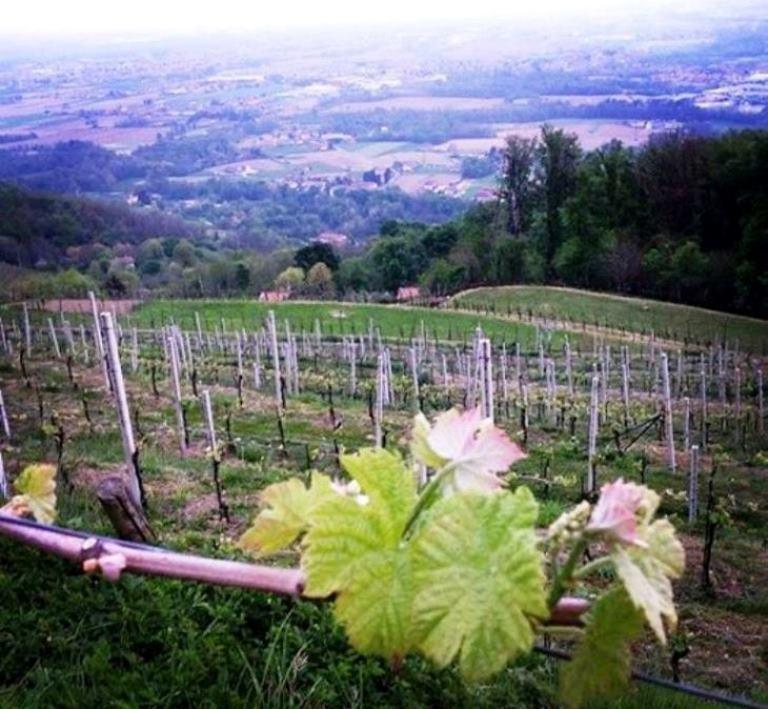 Farmhouse trovata! E con che vista! #Cavril #Agriturismo #SottoilMonte #Bergamo