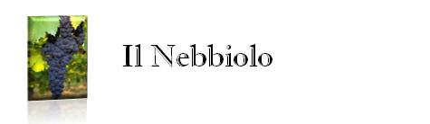 Il Nebbiolo