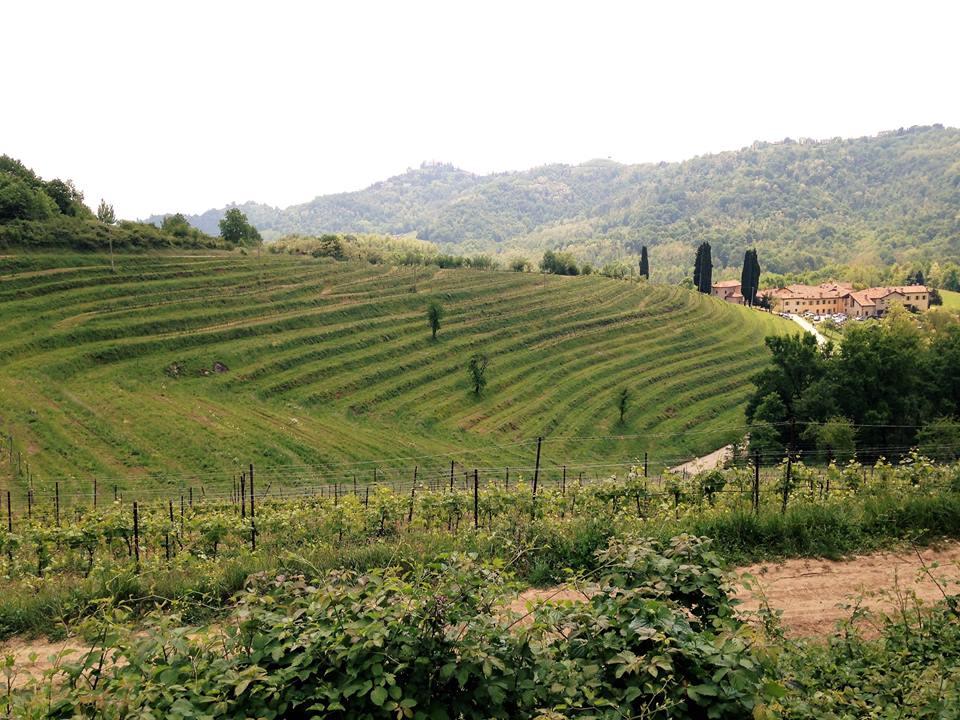 Montevecchia پارک